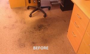 Belmont_CA_CARPET_CLEANING_016