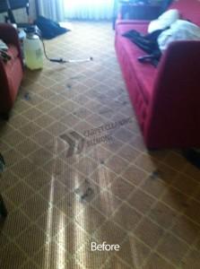 Belmont_CA_CARPET_CLEANING_025