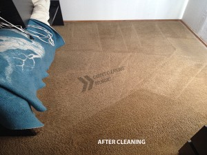 Belmont_CA_CARPET_CLEANING_AFTER