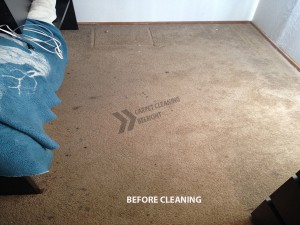 Belmont_CA_CARPET_CLEANING_BEFORE