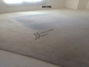 Belmont_CA_CARPET_STAINS_BEFORE