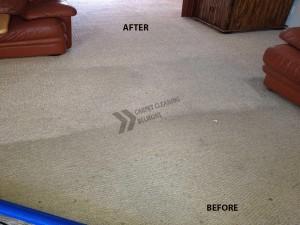 Belmont_CA_Carpet_Cleaning_2